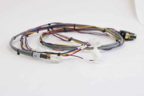Multi-Terminal Wire Harness